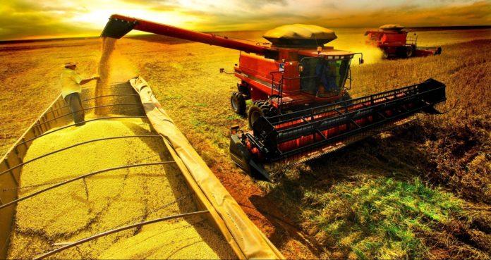 Exportações do agronegócio gaúcho tiveram queda de 10,8% em agosto