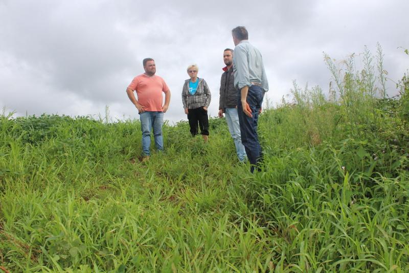 Usina de álcool de Batata Doce em Carazinho promete baratear etanol na região