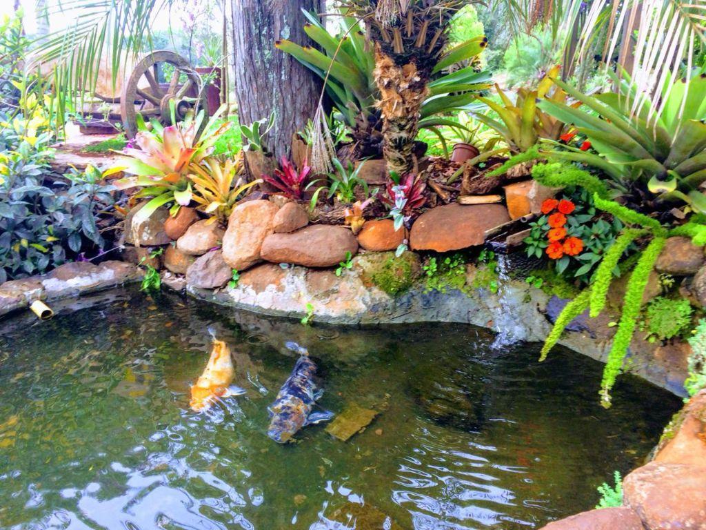 Caminho das Topiarias, Flores e Aromas de Victor Graeff encanta turistas de todo Brasil