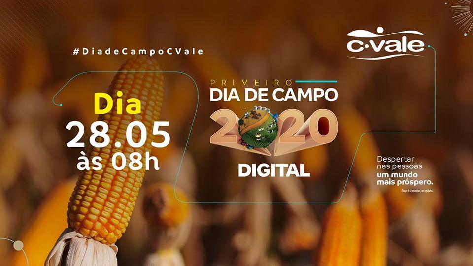C.Vale realiza dia de campo digital sobre milho safrinha no dia 28 de maio
