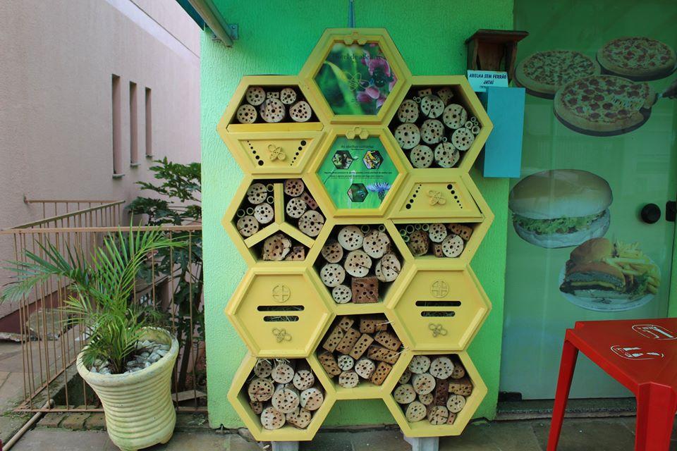 Hotel de abelhas em Tio Hugo abriga insetos polinizadores que perderam seu habitat natural