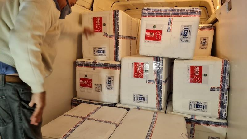 Secretaria da Saúde distribui 340 mil doses da vacina contra a Covid-19 nesta quarta, dia 21