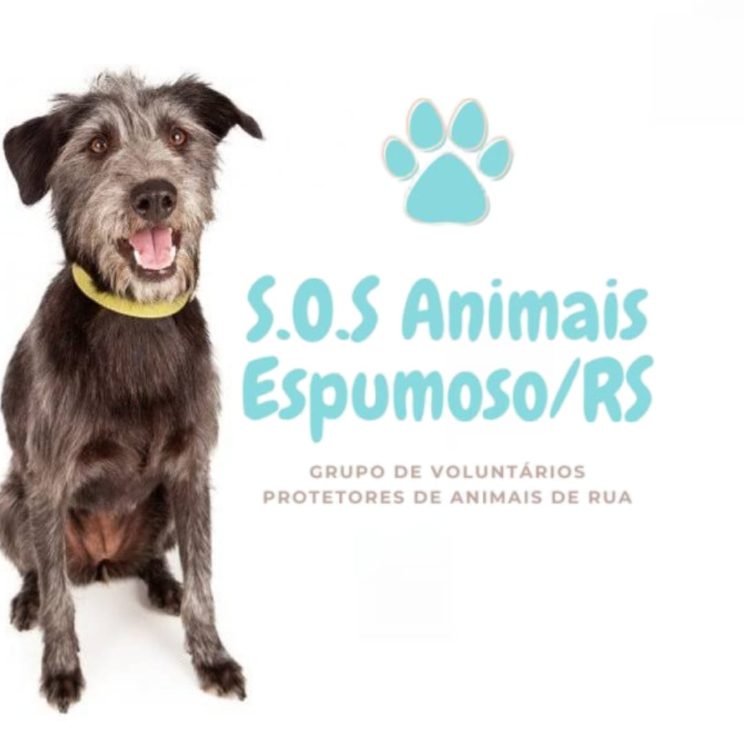 SOS Animais precisa da ajuda da comunidade espumosense
