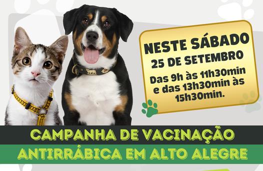 Alto Alegre promove Campanha de Vacinação Antirrábica em cães e gatos