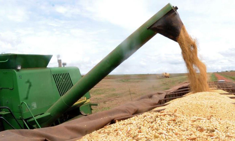 Zoneamento agrícola da soja para safra 2021/2022 é publicado