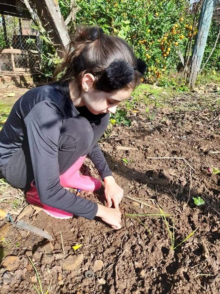 """Escola Municipal Seomar Mainardi desenvolve projeto """"Cultivando esperança em minha casa"""""""