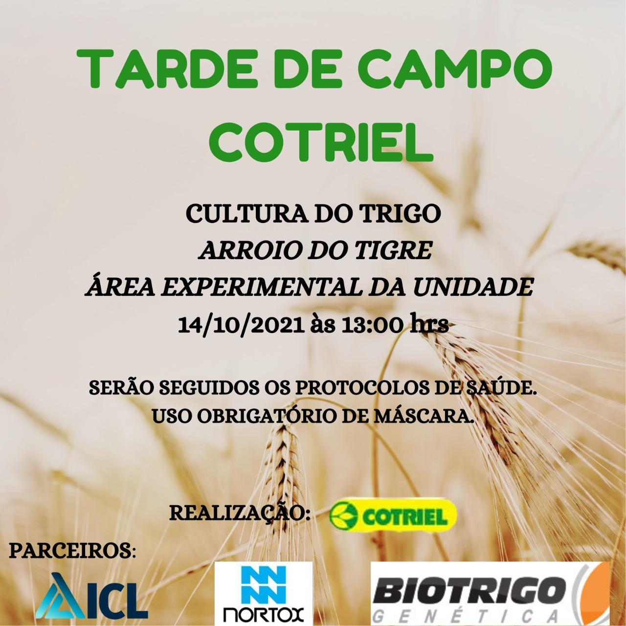 Cotriel realiza tarde de campo sobre trigo em Arroio do Tigre