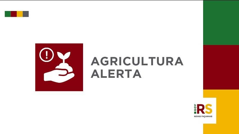 Secretaria da Agricultura alerta para ação de golpistas que solicitam pagamentos em dinheiro