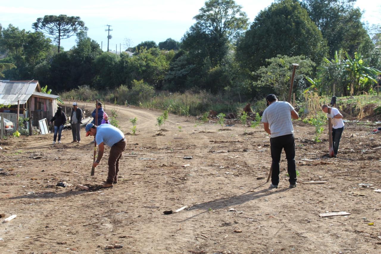Departamento de Meio Ambiente realiza o plantio de 80 mudas de árvores nativas em Soledade