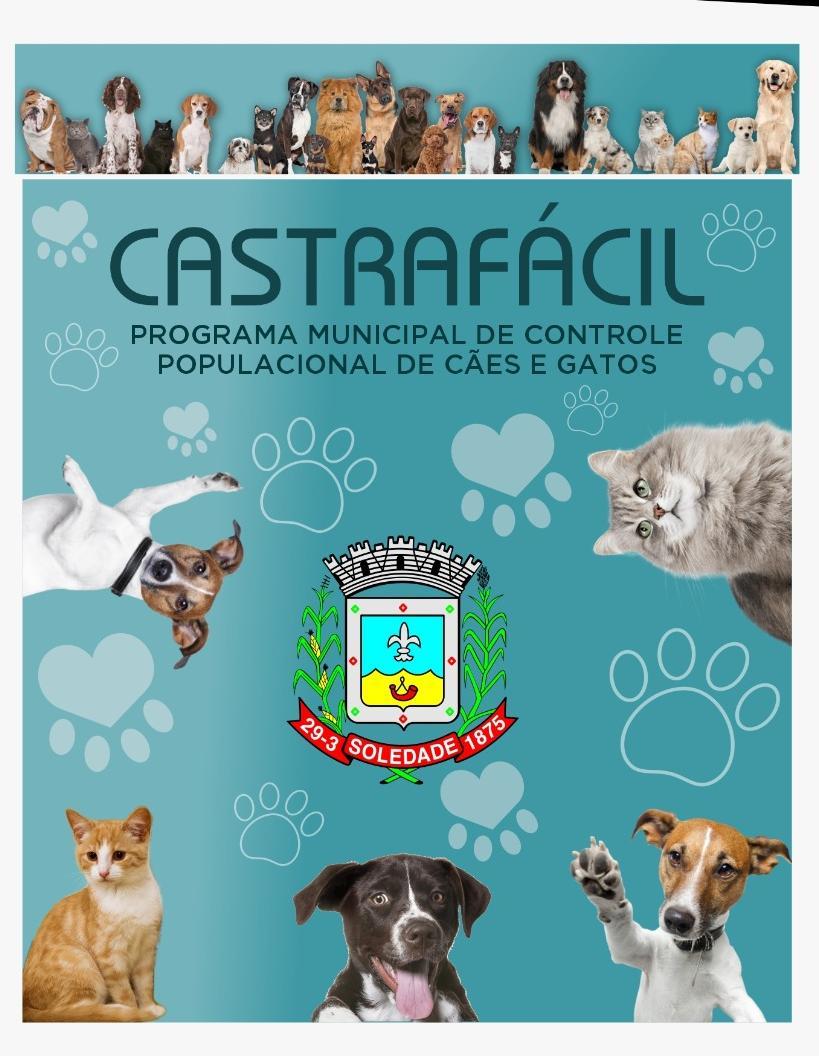 Programa CastraFácil realizou 39 castrações no mês de junho