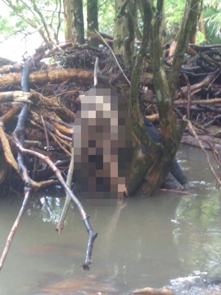 Corpo é encontrado no interior de Barros Cassal