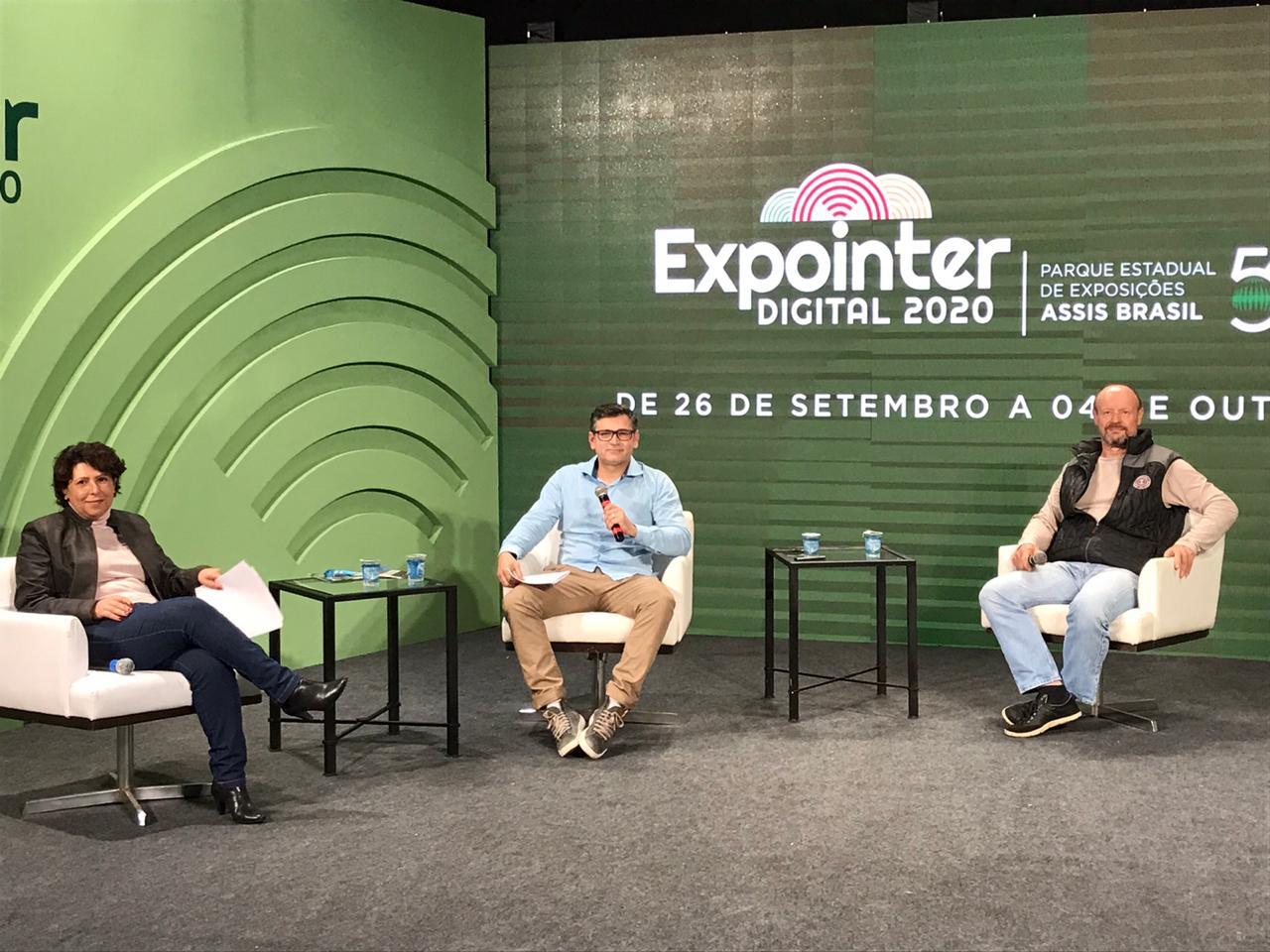 EXPOINTER DIGITAL 2020: Painel descreve oportunidades da olivicultura para produtores rurais