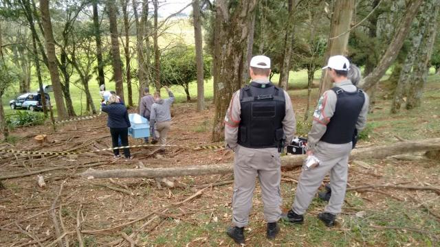 Lenhador morre atingido por árvore em Ernestina