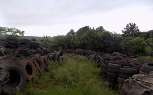 Policiamento ambiental flagra depósito de pneus a céu aberto em Ernestina