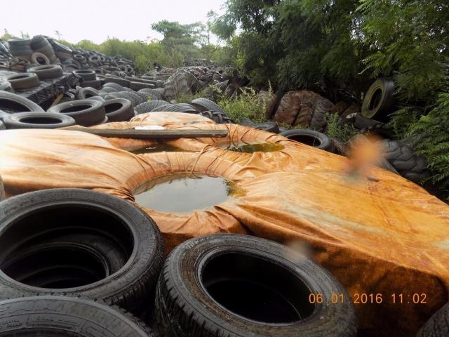 Vigilante sanitário coleta amostras de água acumulada em depósito de pneus em Ernestina