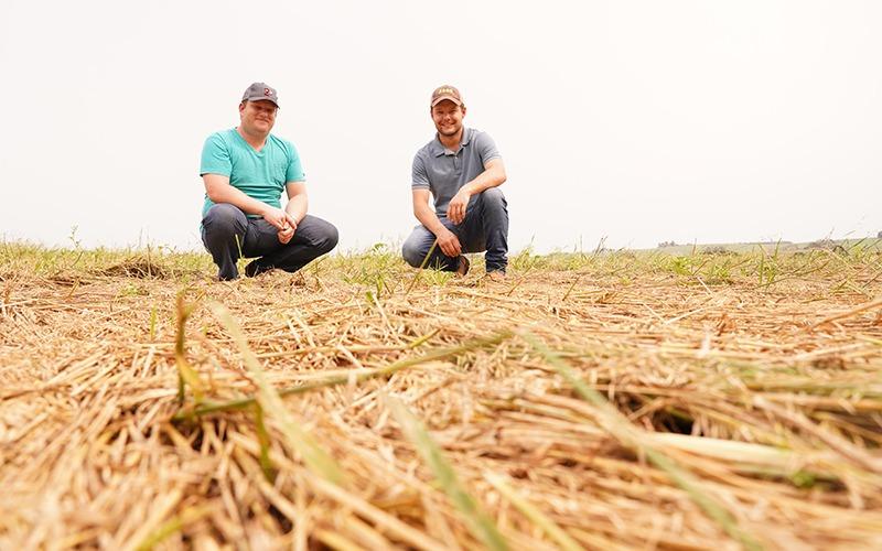 Produtores entram em contagem regressiva para a semeadura da soja