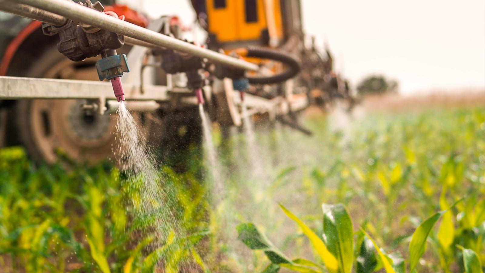 Anvisa proíbe agrotóxicos com Paraquat no Brasil