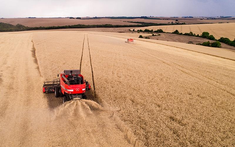 Cotrijal anuncia que seguro agrícola gerou economia de R$ 11,9 milhões aos produtores