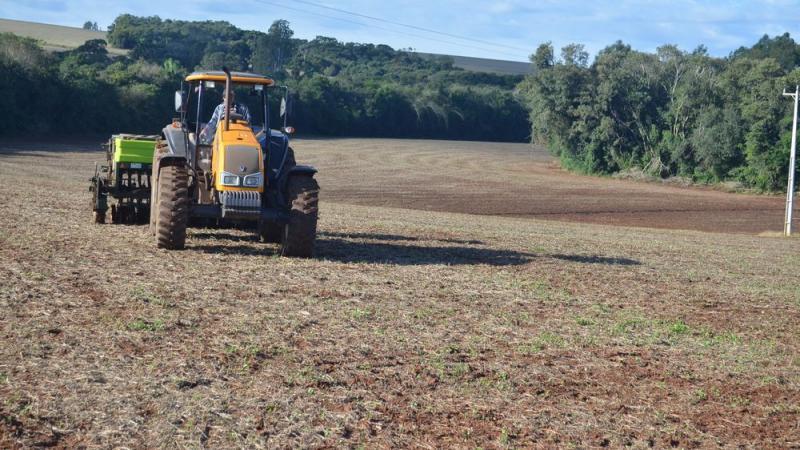 Com boas expectativas, plantação do trigo nas lavouras da região têm andamento
