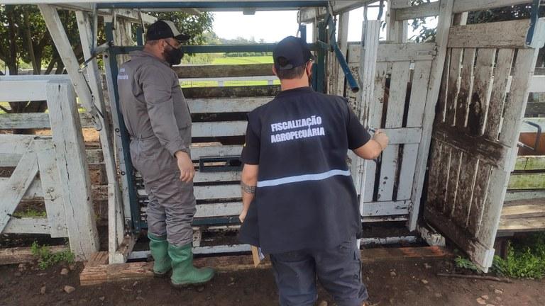 Megaoperação apreende 350 toneladas de produtos irregulares em Não-Me-Toque e mais 15 municípios
