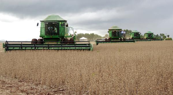 Expedição por lavouras do grãos no País e aponta os desafios da safra recorde