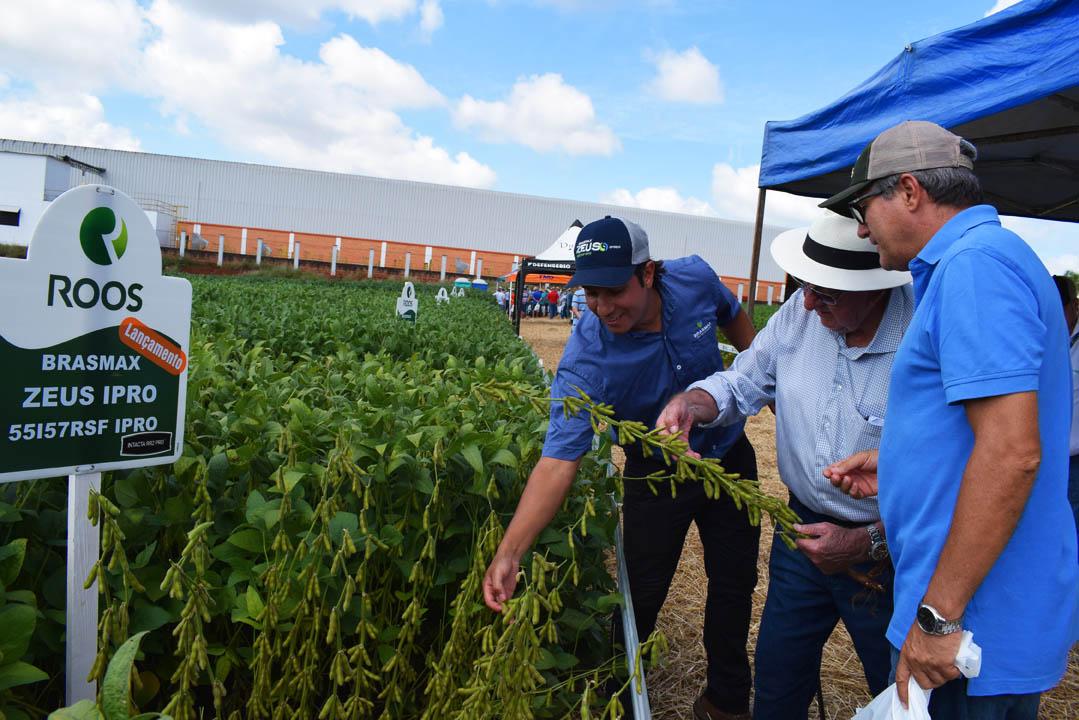 Roos apresenta sementes de soja com potencial para 3 dígitos