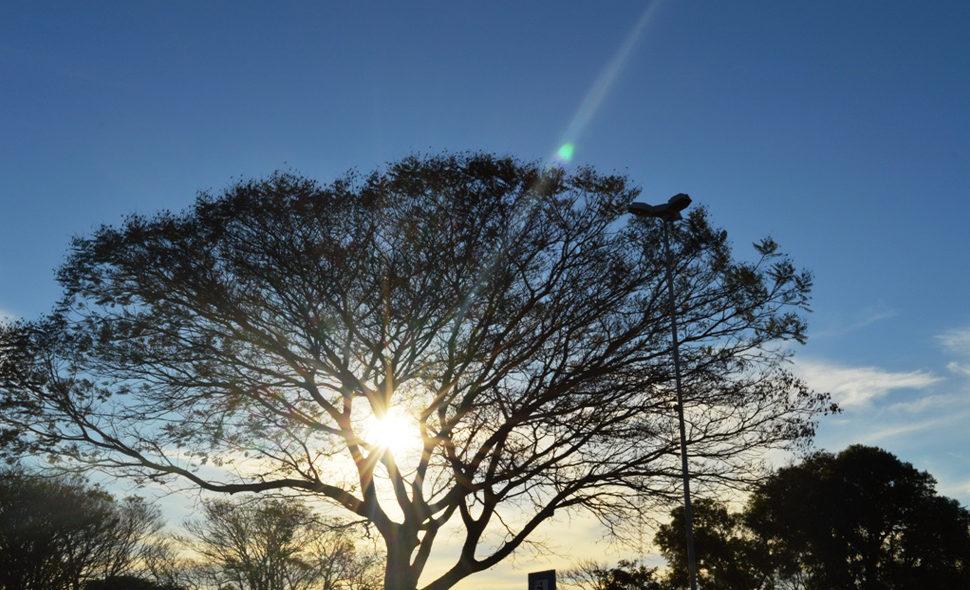 Domingo será de sol e alta temperatura no Rio Grande do Sul