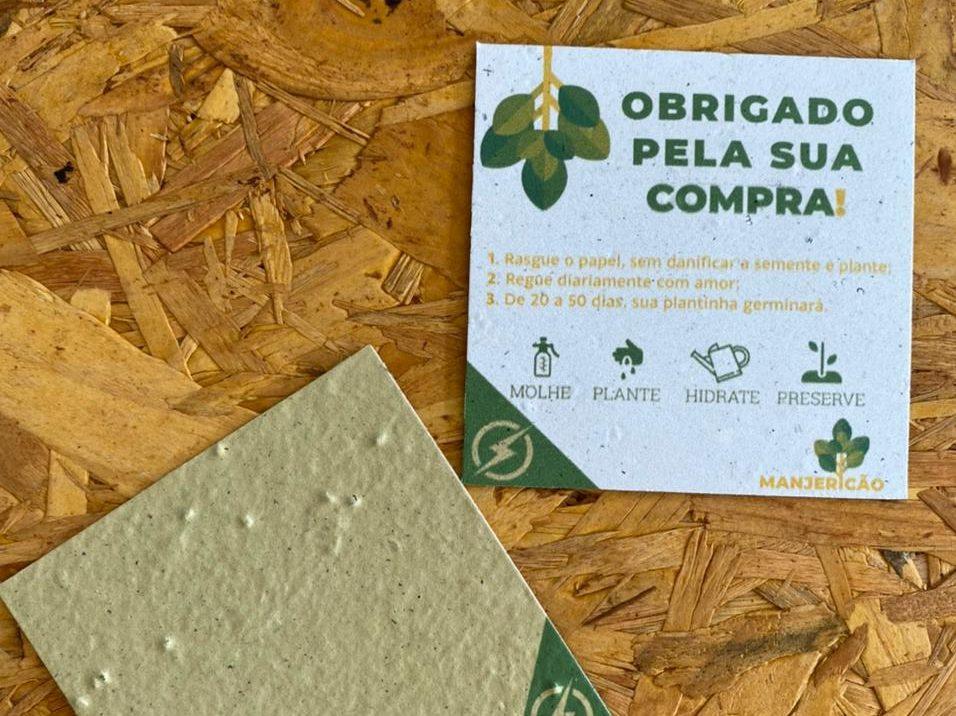 Loja de vestuário em Não-Me-Toque cria etiqueta personalizada com papel semente