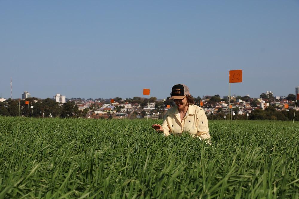 Curso de Agronomia da UPF completa 60 anos de história