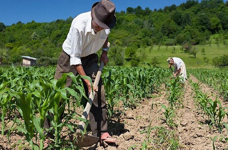O trabalhador rural e a luta pelo reconhecimento do tempo rural antes dos 12 anos