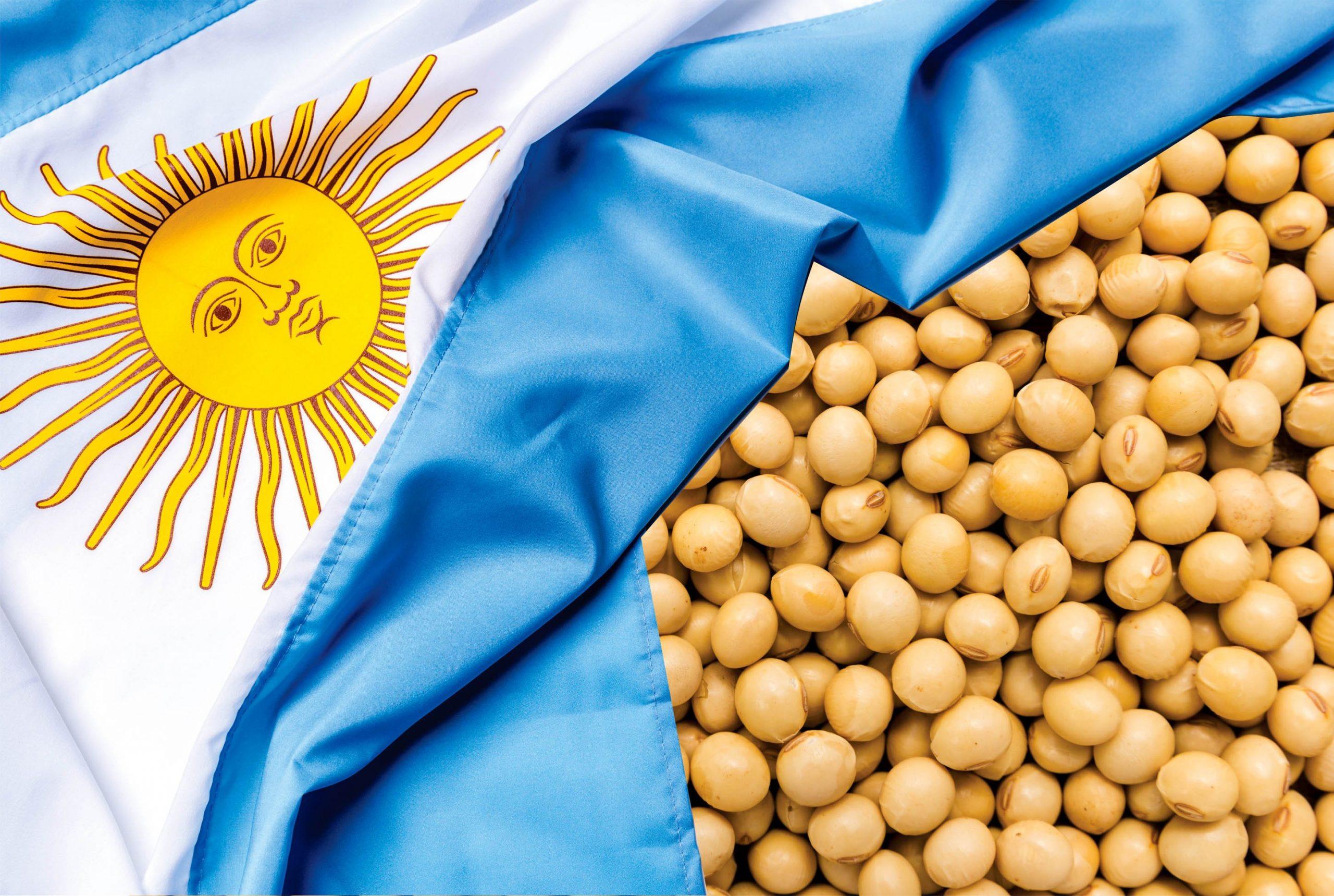 Bayer desiste de comercializar soja na Argentina