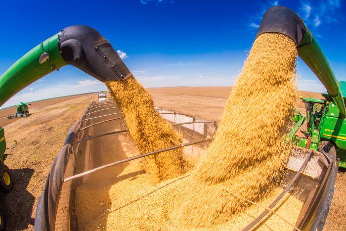 Parceria da Agricultura fará teste em solos para determinar produtividade da soja no RS