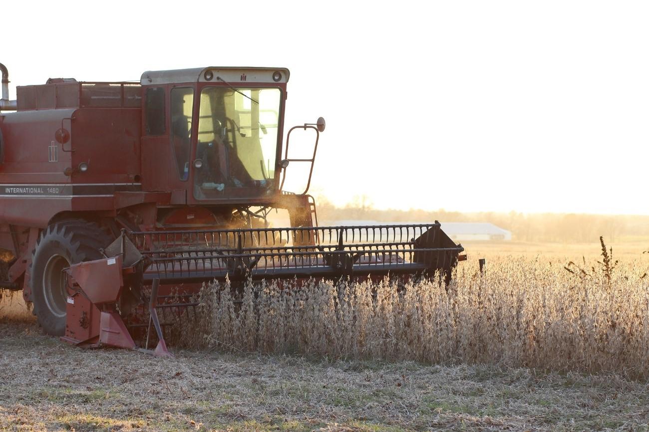 Possível calote da chinesa Evergrande pode impactar o agro brasileiro