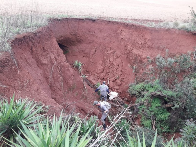 Secretaria da Agricultura emite segundo alerta sanitário sobre aumento de focos de raiva herbívora